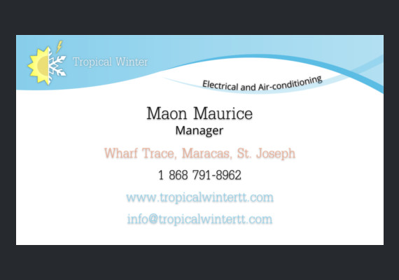 Tropical Winter Business Card [Front]